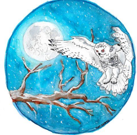 cropped-winter_wonder_owl_by_tombotvez-daslcf9.jpg
