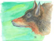 wolfie_dog_woof_woof___watercolor_by_tombotvez-dar9mdx